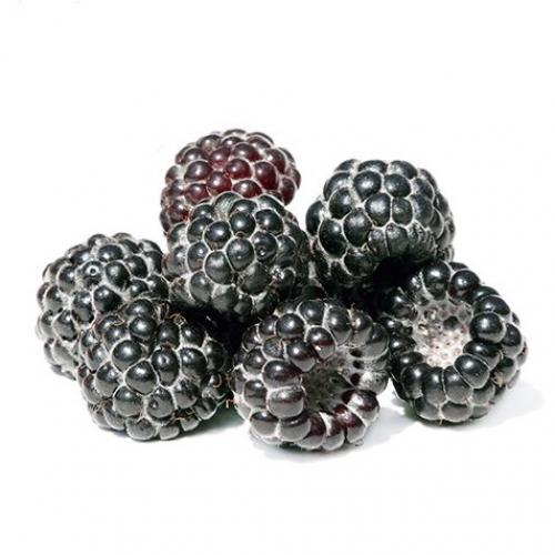 black raspberries 2
