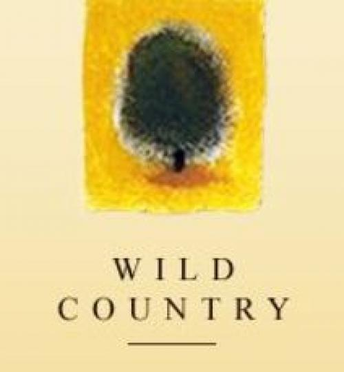 wild country logo2